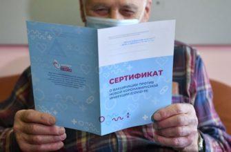 Россияне не смогут использовать ковид-сертификаты с портала госуслуг для поездок за рубеж   Интерфакс-Туризм
