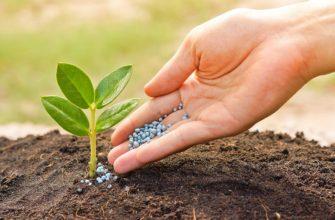 Декларация соответствия агрохимикатов и пестицидов: сертификат на удобрения от RegGos