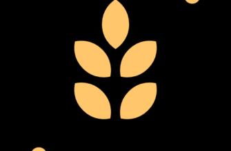 Кукуруза (початки): получить сертификат | Госстандарт Эксперт