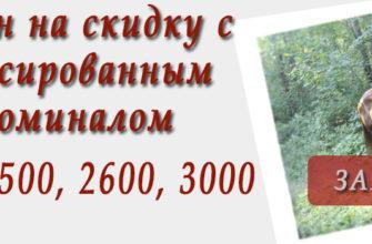 Конная прогулка для двоих. Конный клуб Konipark в Красноярске