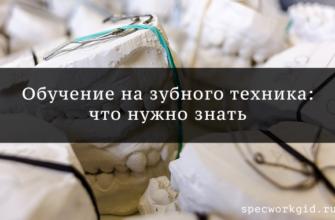 Обучение на зубного техника - обзор курсов, что нужно знать о профессии