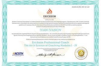 Обучение бизнес-коучингу в Академии PwC   Сертификация коучей