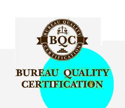 Приложение.  Требования к форме квалифицированного сертификата ключа проверки электронной подписи | ГАРАНТ