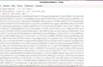 Openssl, проверка SSL-сертификатов через терминал | Укрнеймс.БЛОГ