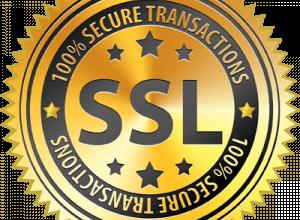 1 этап: Заказ SSL-сертификата   REG.RU