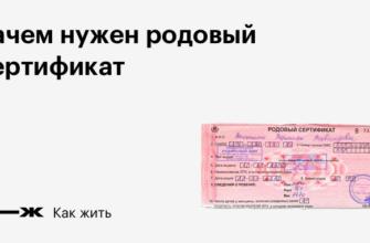 Что такое родовой сертификат: зачем он нужен и что с ним делать