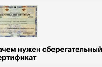Ссберегательный сертификат: как оформить и обналичить, как использовать
